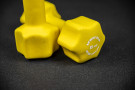 Pair of Fitness Dumbbell