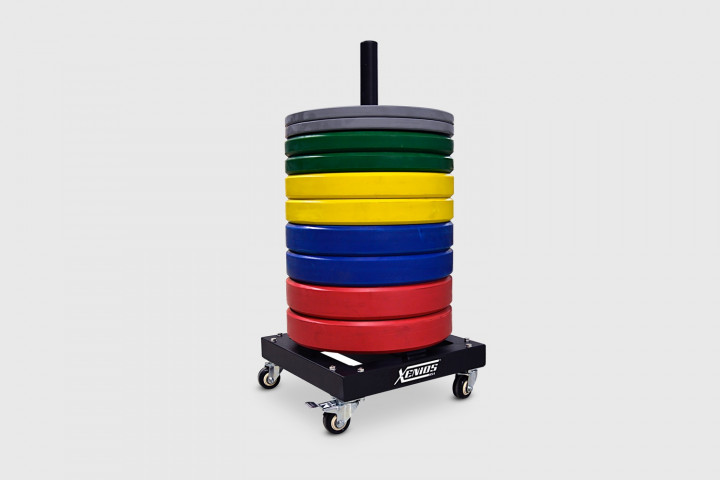 Bumper Plates Stacker with wheels